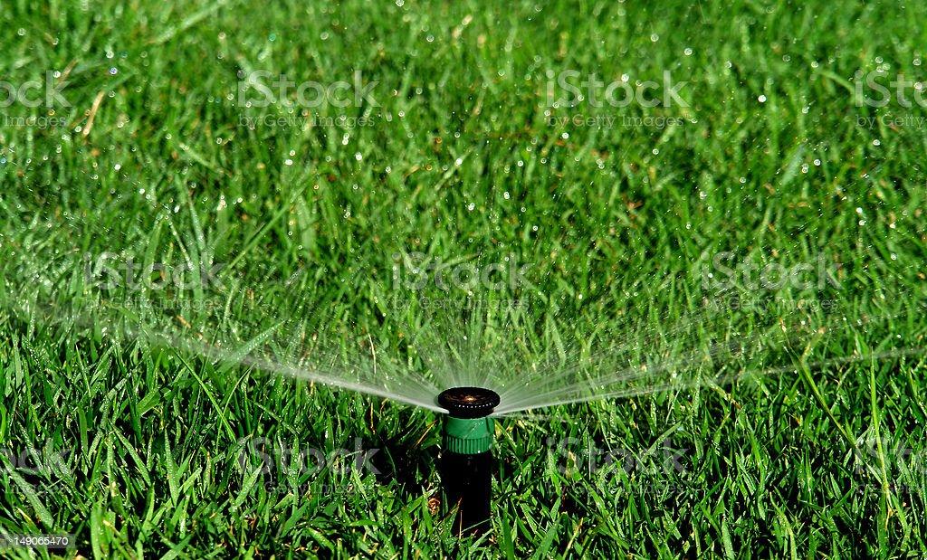 Garden irrigation system royalty-free stock photo