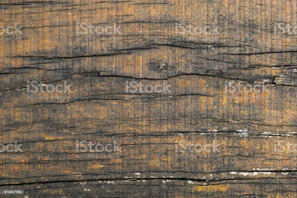 Garden landscaping timber deteriorating stock photo