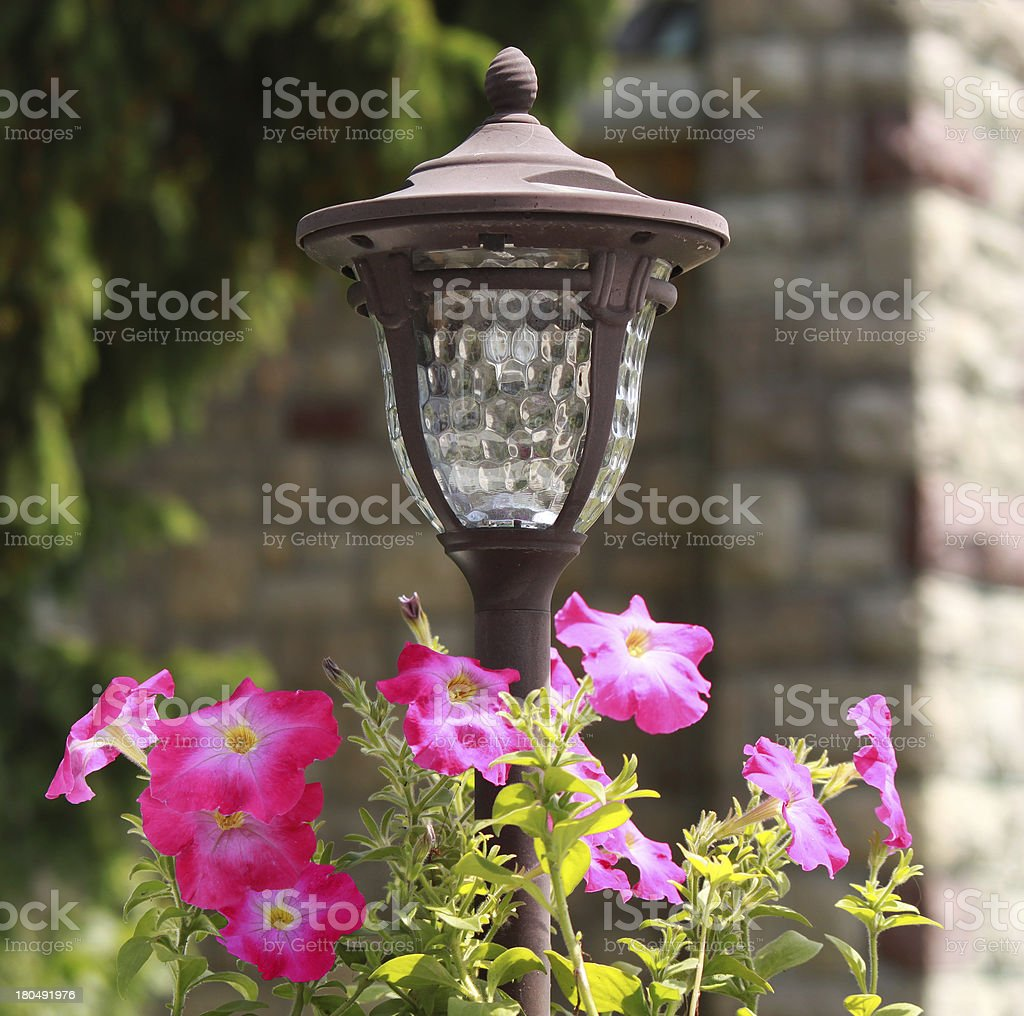 Garden lantern with pink flowers royalty-free stock photo
