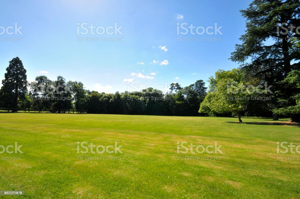 Pelouse jardin stock photo