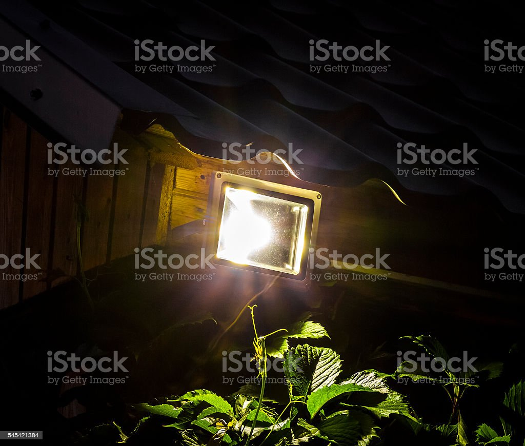 Garden LED Spotlight stock photo