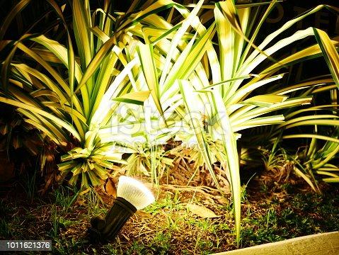 498598201 istock photo Garden Light in Garden Design. 1011621376