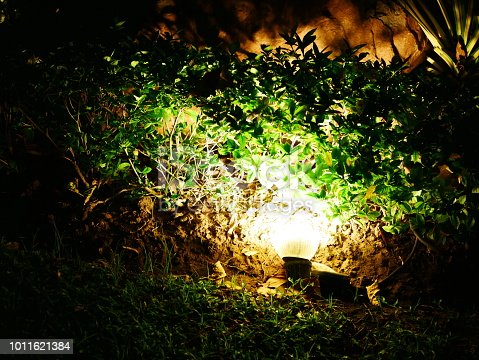 498598201 istock photo Garden Light in Garden Design. 1011621384