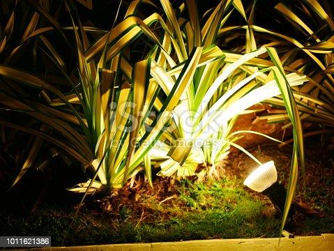 498598201 istock photo Garden Light in Garden Design. 1011621386