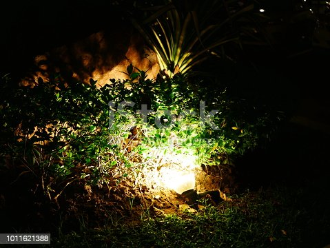 498598201 istock photo Garden Light in Garden Design. 1011621388