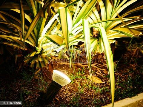 498598201 istock photo Garden Light in Garden Design. 1011621530