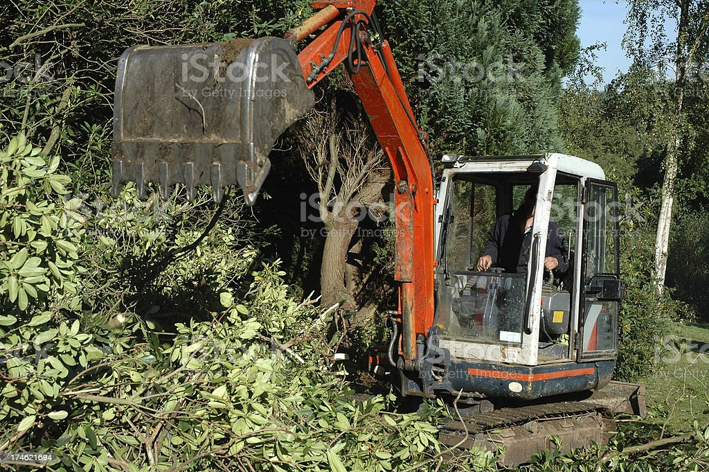 Garden - Mechanical digger royalty-free stock photo