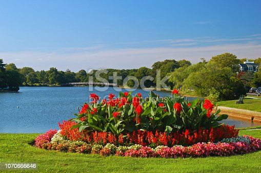 A beautiful, blooming summer garden sits at the edge of a serene lake