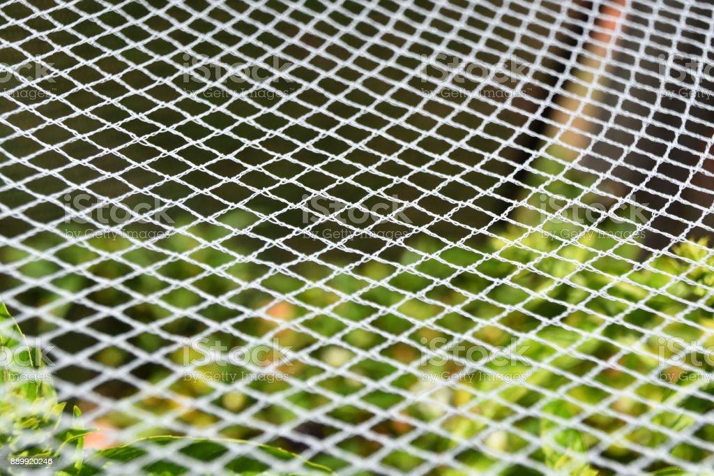 Garden Netting stock photo