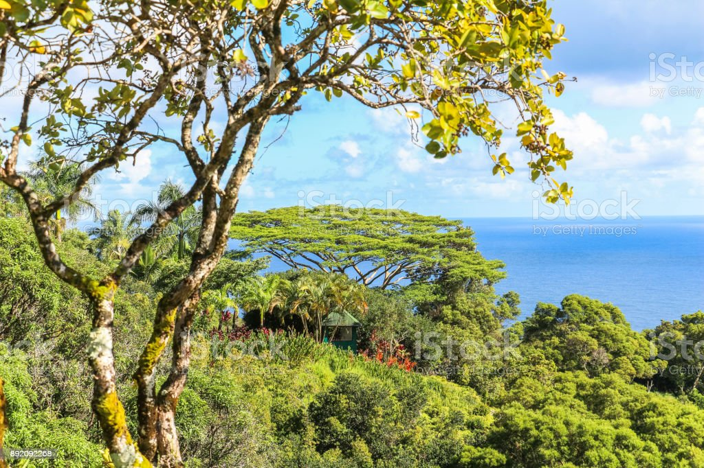 Garden Of Eden Landscape View On Maui Hawaii Stock Photo & More ...