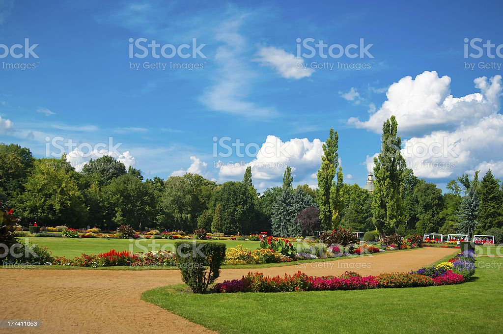 Garden of flowers stock photo