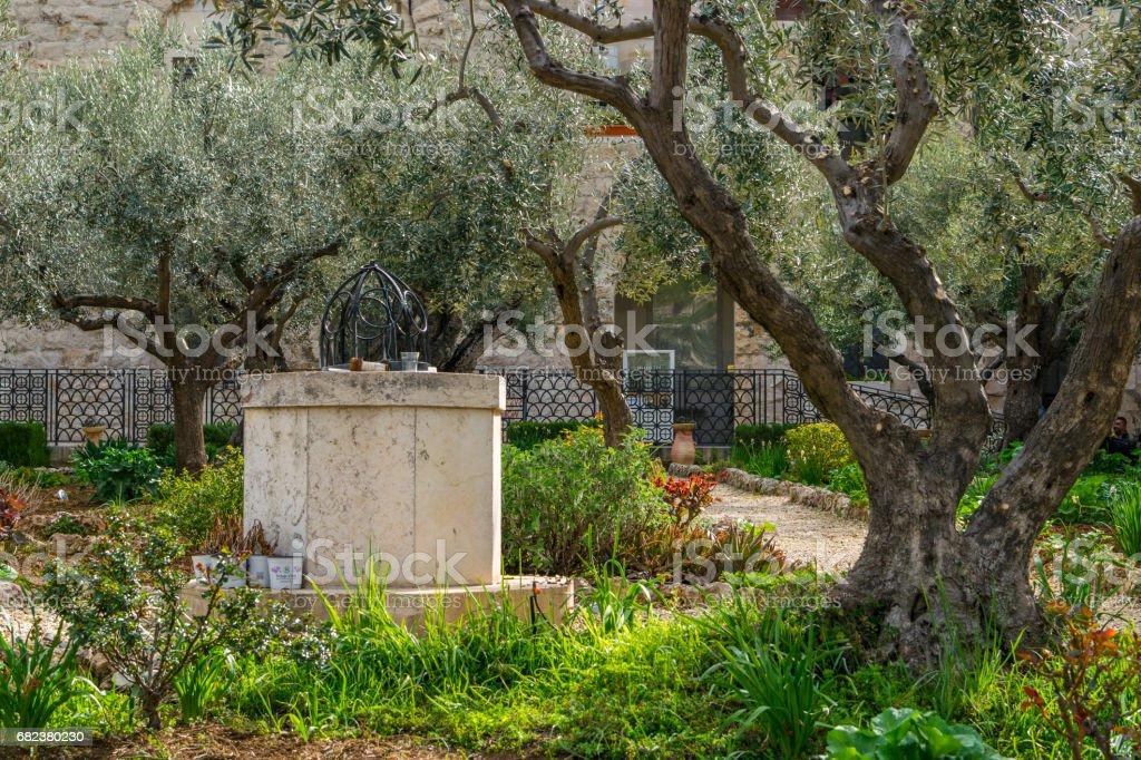 Garden of Gethsemane - well stock photo