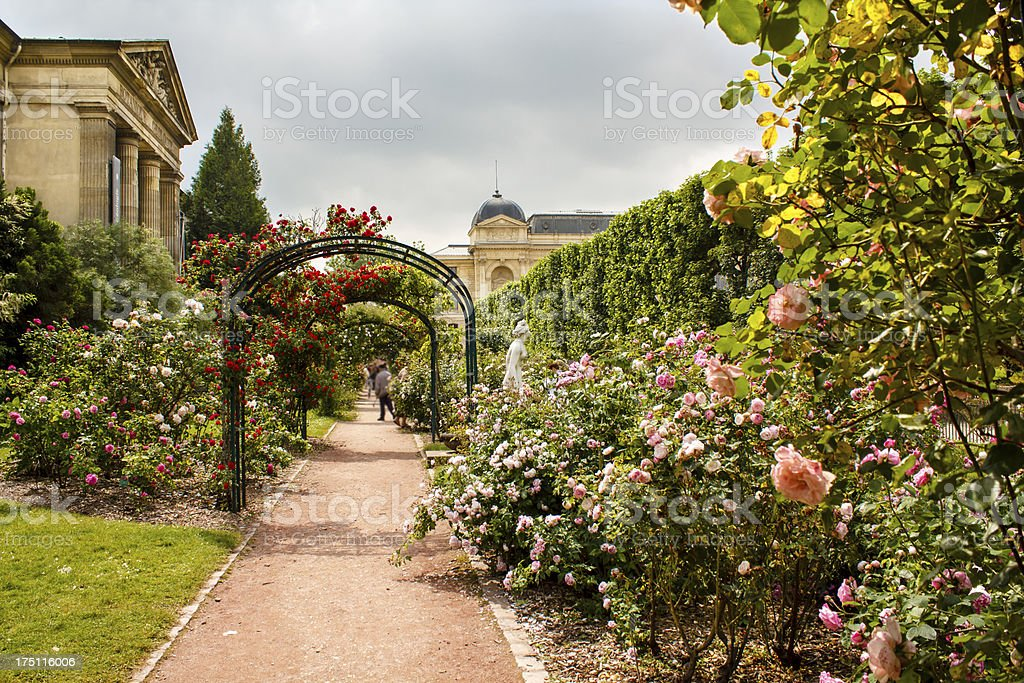 Garden of roses in the Jardin de Plant in Paris, France. Eastern part...