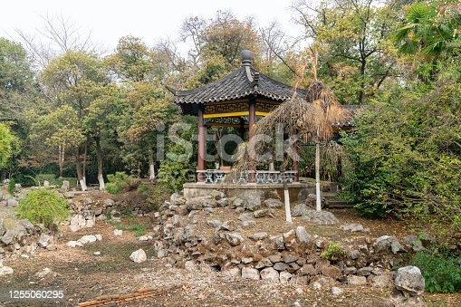 garden of southern Changjiang delta in China