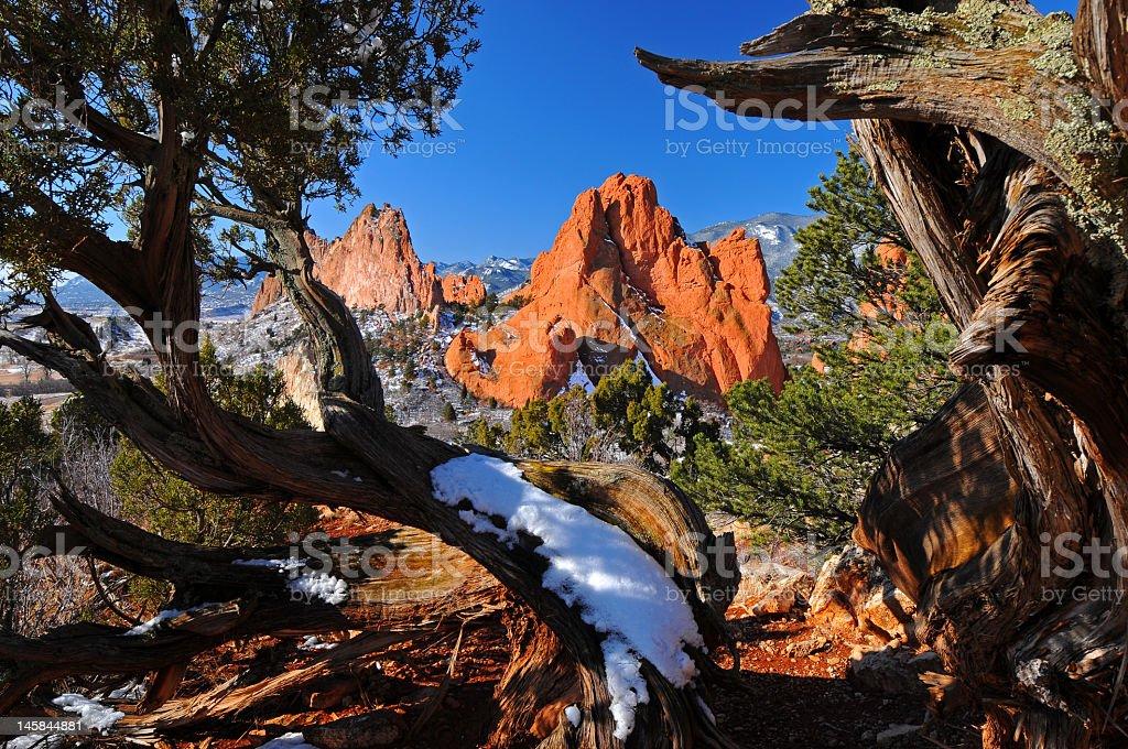 Garden of the Gods framed by Juniper Trees stock photo