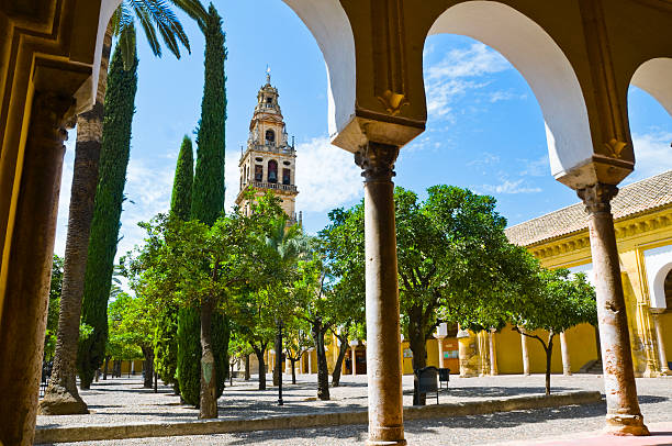 Garden of the orange trees  cordoba mosque stock pictures, royalty-free photos & images
