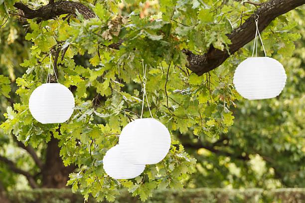 Garden party圖像檔