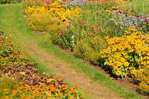 Garden path – Foto