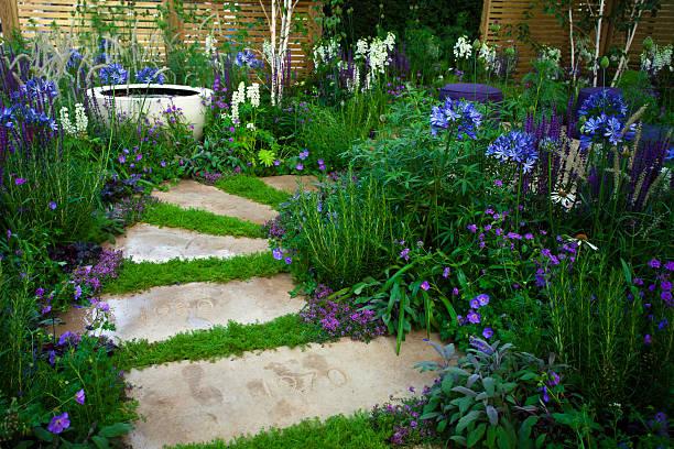garden path - perenn bildbanksfoton och bilder