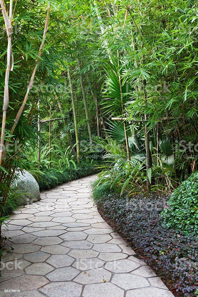 Sentiero di giardino foto stock royalty-free