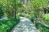 Garden pathway with hand rail suitable for handicap senior or wheel chair patients. Senior and aging society concept.