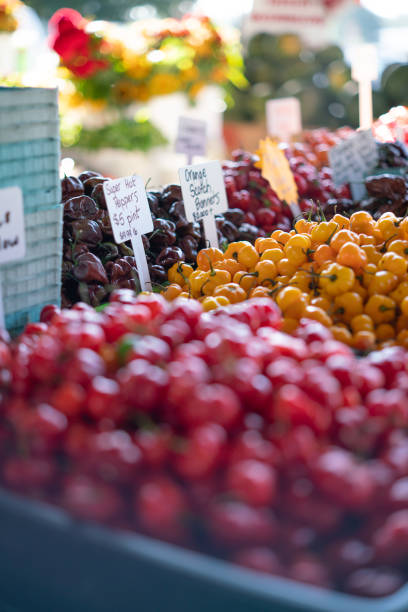 Garden Peppers stock photo