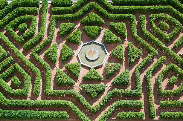 garden - maze stock photos and pictures