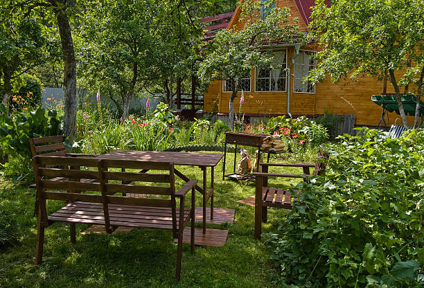 Garden Dacha and garden in summer time russian dacha stock pictures, royalty-free photos & images