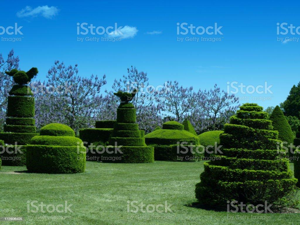 Sur le jardin - Photo
