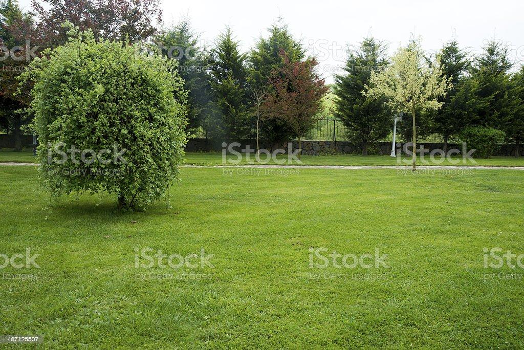 Garden royalty-free stock photo