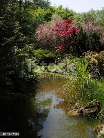 Garden in spring.