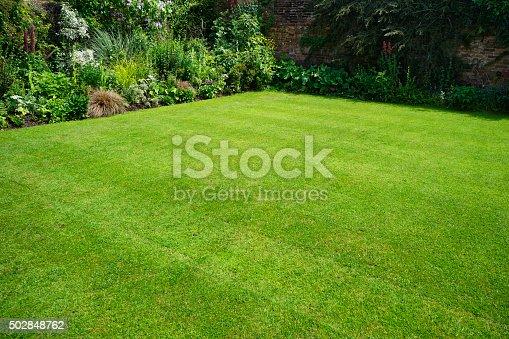 a lush english garden in summer