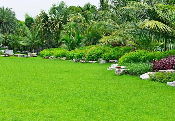 den garten - palmengarten stock-fotos und bilder