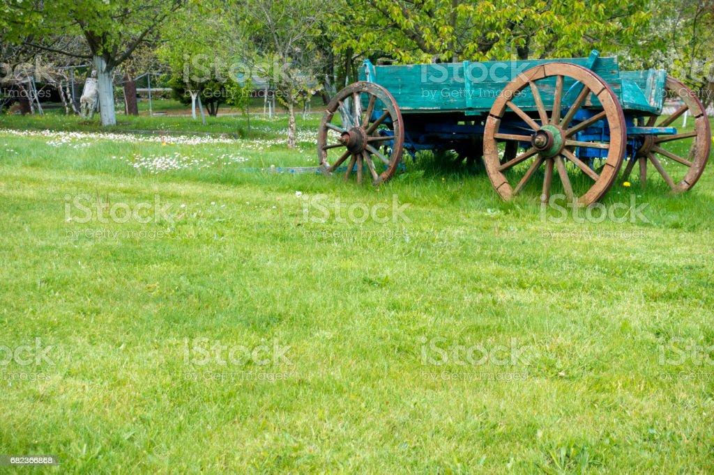 Garden foto stock royalty-free