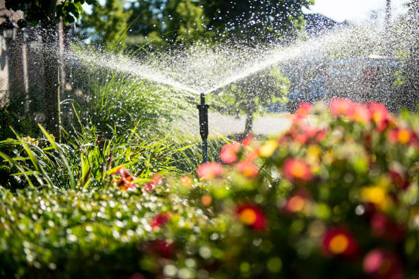 garden - watering stock pictures, royalty-free photos & images