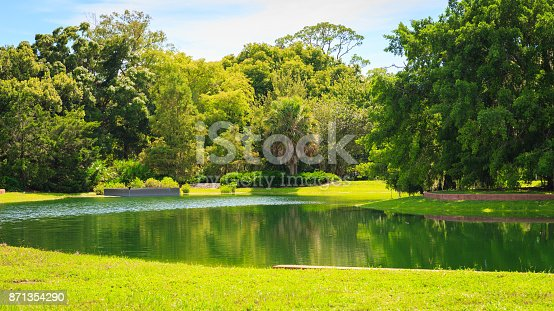 Beautiful parkBeautiful garden with nice lawn and palms