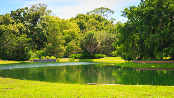 garden - пруд стоковые фото и изображения
