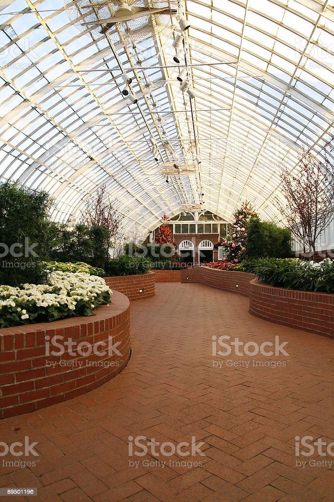 Garden royalty free stockfoto