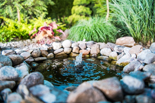 Beautiful backyard garden pond with natural river stones and clear waterfall.