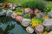 Japanese garden with koi-pond
