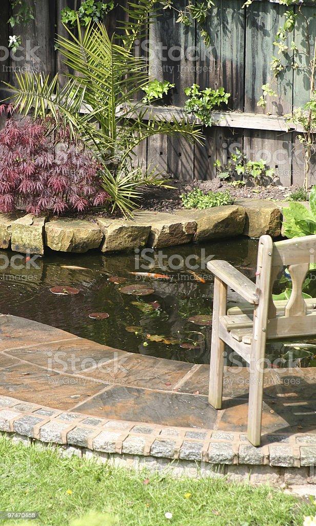 Garden Pond. stock photo