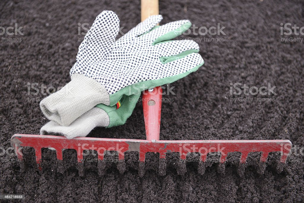 Garden rake and gloves royalty-free stock photo