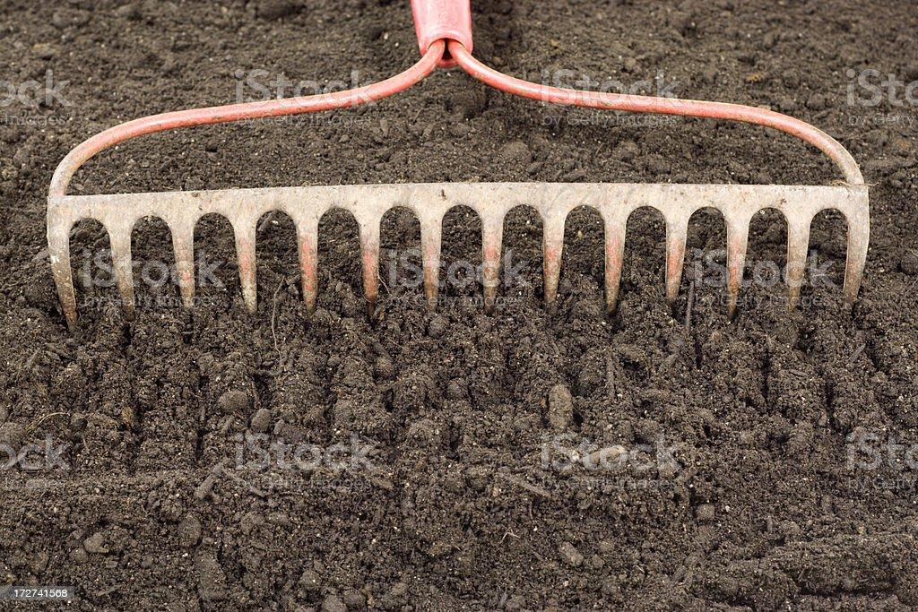 Garden Rake stock photo