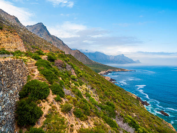 Jardín Ruta en el sur de África - foto de stock