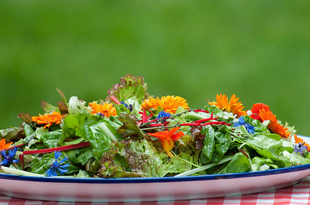 garden salad with eatable flowers stock photo