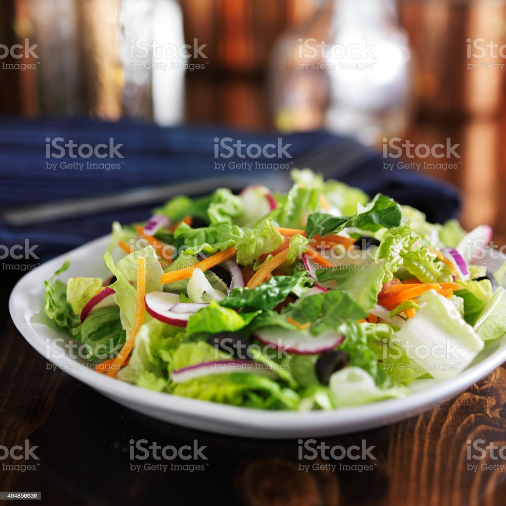 garden salad with romaine lettuce stock photo