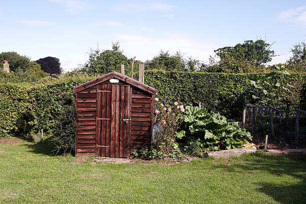 Garden shed in typical English back yard Garden shed in typical English back yard shed stock pictures, royalty-free photos & images