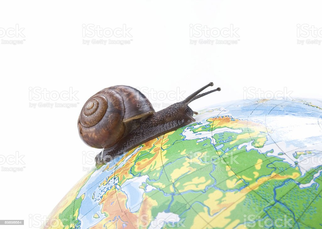 Garden snail on globe royalty-free stock photo