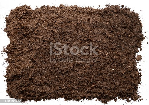 927125180 istock photo Garden soil texture background top view. cut out 1145184738