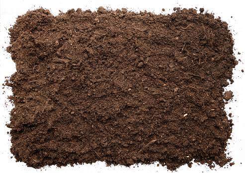 Garden soil texture background top view. cut out